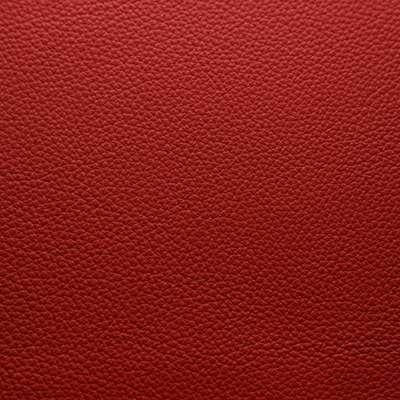 Labrador 01 Röd
