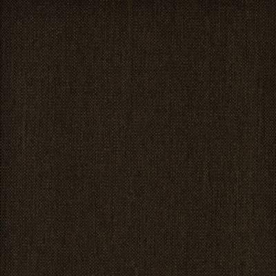 Mörkbrun (6) / 6-8 veckor