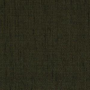 Vera brungrå