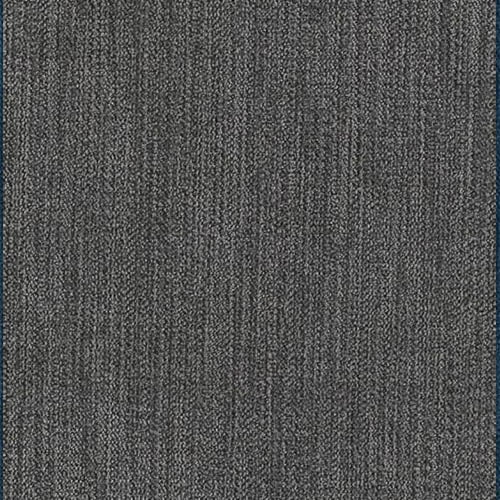Touch gris / 7-10 veckor
